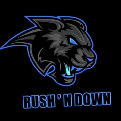RushNdownFrance Team - VSLeague Online eSport