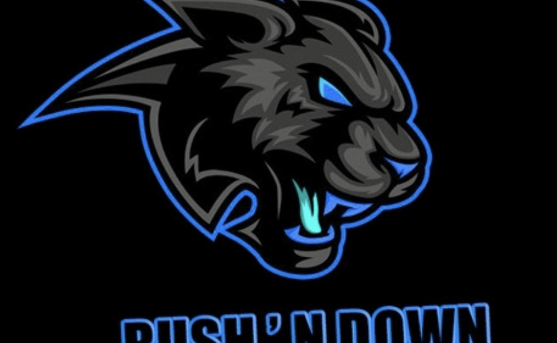 RushNdownFrance Team - VSLeague Online eSport
